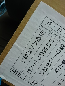 DSC_9010.JPG