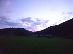 DSC_9146.JPG